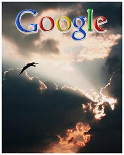 googlefccauc.jpg