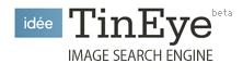 tineye-logo.png