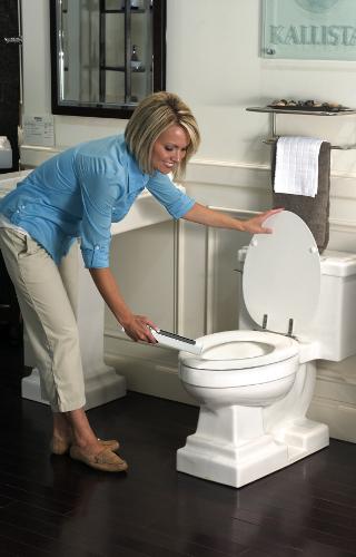mini_wand_toilet