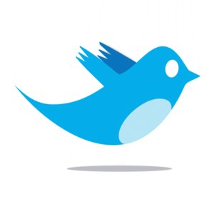 twitter_bird_logo_by_ipotion