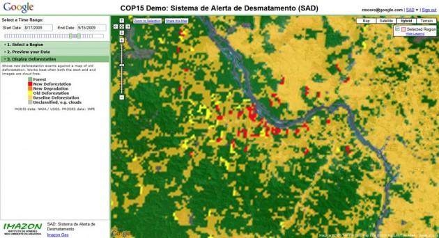 deforestationgoog1