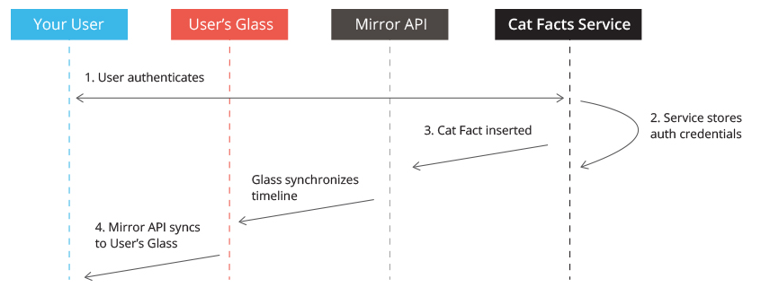 cat-facts-on-glass