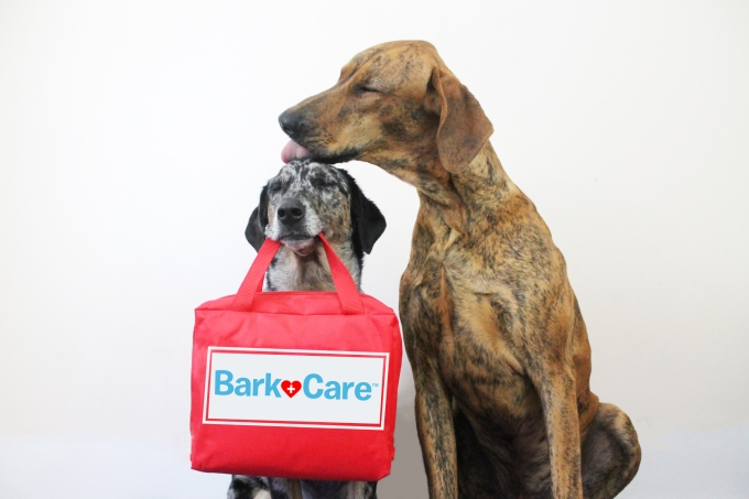 BarkCare
