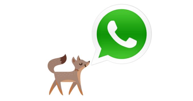 facebook-whatsapp-fox