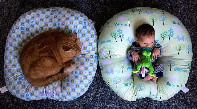 Storify co-founder Burt Herman is leaving to raise his newborn son Eli