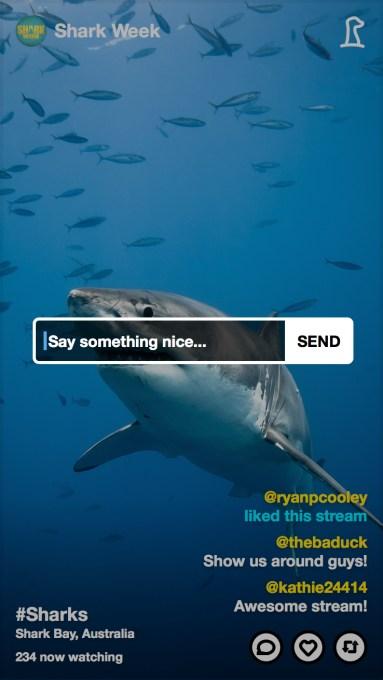 Meerkat Discovery Shark Week