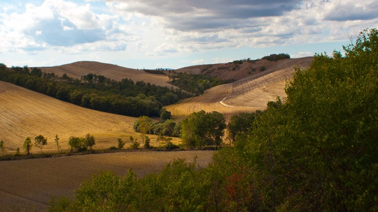 With a quality score of 98%, this photo I took in Tuscany five years ago was the best photo I had on my phone. Which isn't a bad shout; personally, I prefer the edited version which has a bit more contrast and saturation and is cropped slightly, but that version received a 92% score.