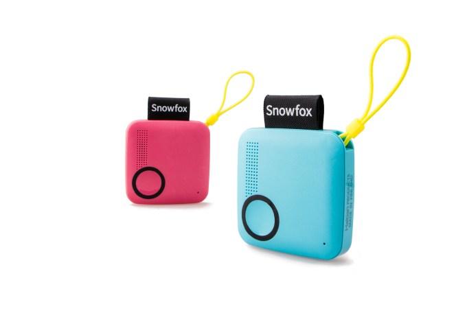 Snowfox pink_Blue