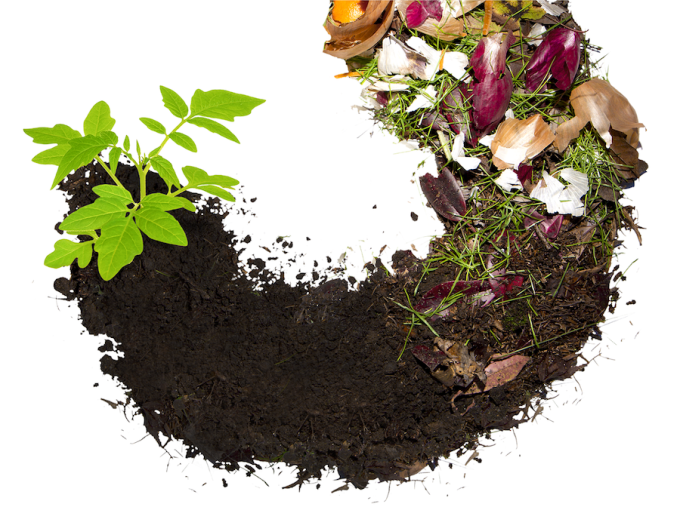 Compost Circle Of Life