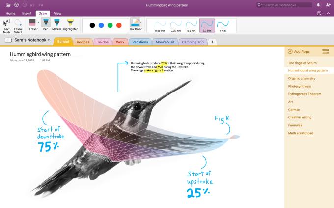 hummingbird screenshot
