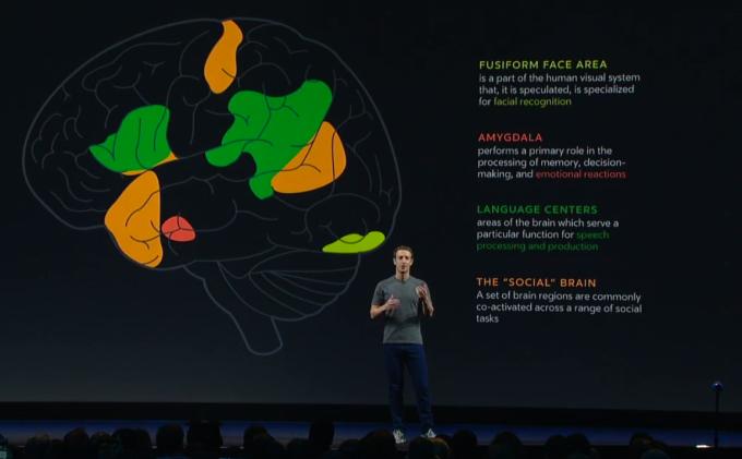 zuck-brain-chemistry