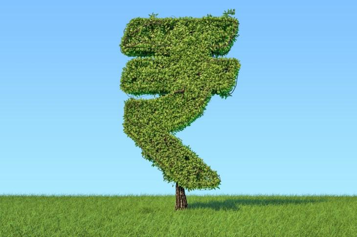 Money tree in the shape of rupee symbol