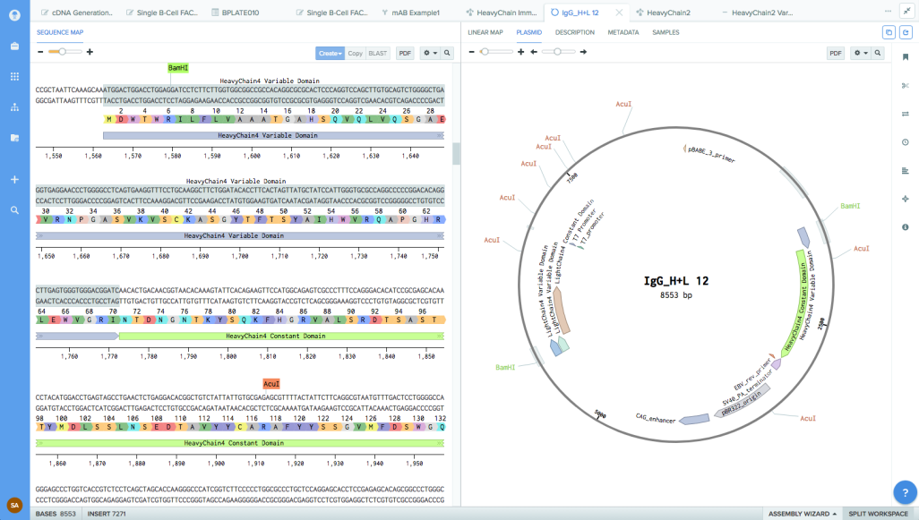 benchling screenshot Mol Bio