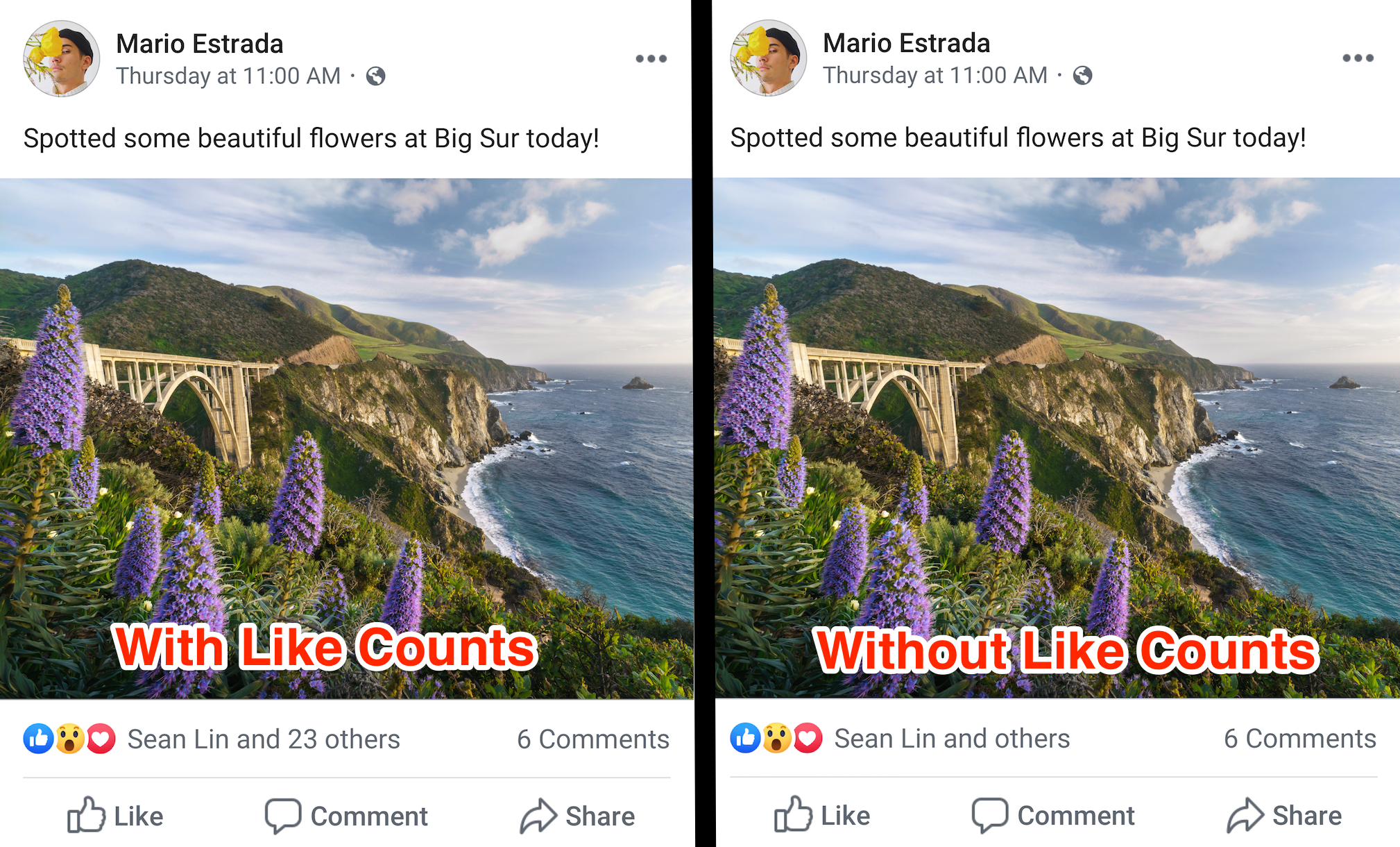 Facebook Hides Likes