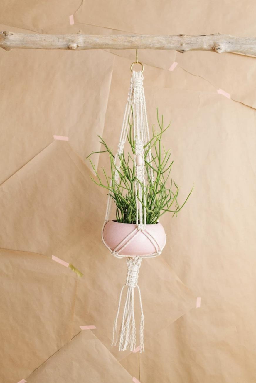 Modern Macrame's plant hanger kit