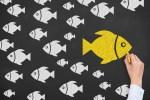 yellow fish chalkboard